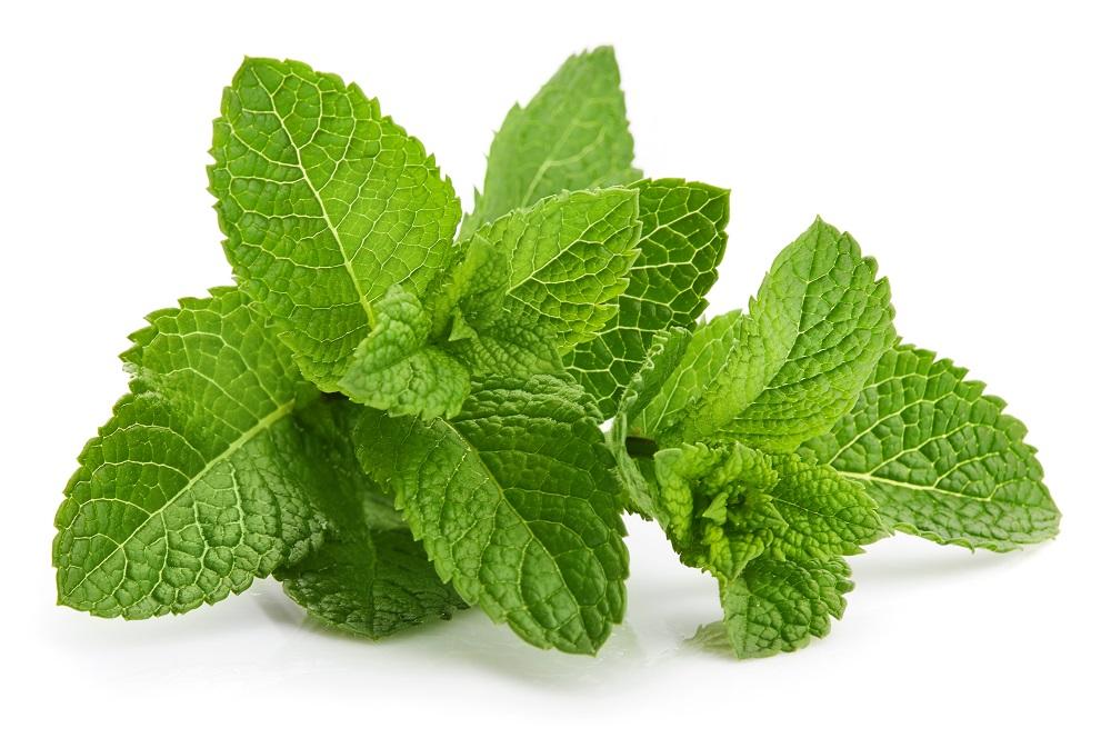 Decoramos con hojas de menta fresca.